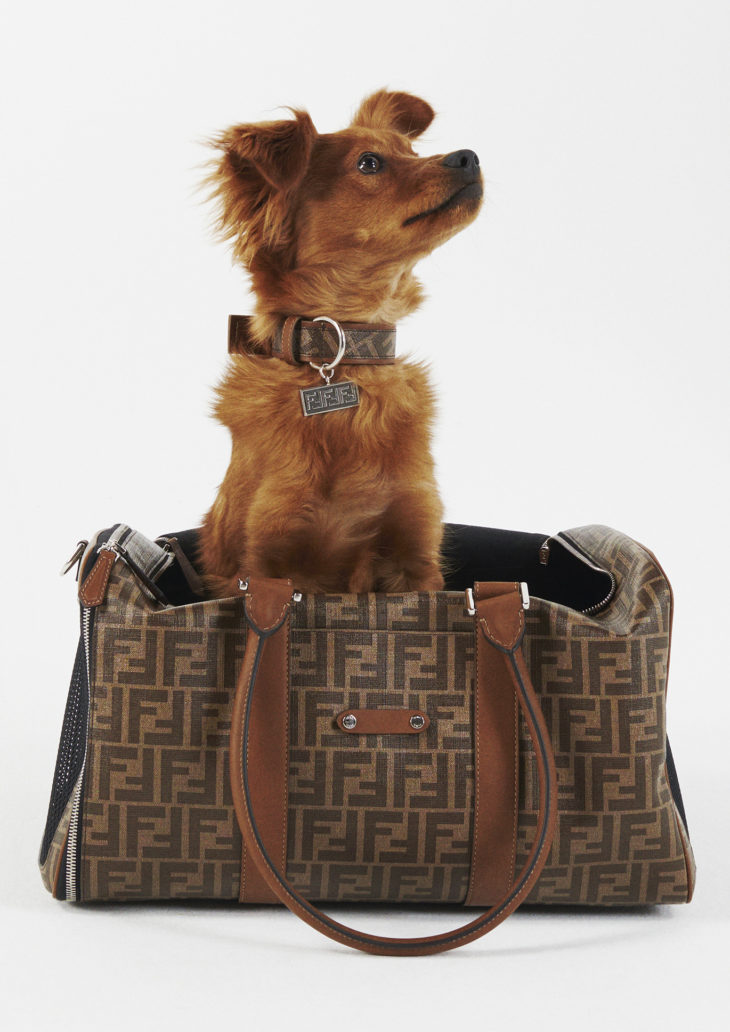 FENDI PRESENTS<br />